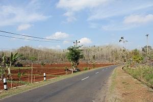 Jalan utama Girisekar