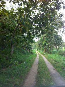 Perjalanan pulang lewat Kabupaten Wonogiri